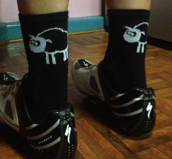 Image of Blacksheep Socks