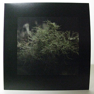 Image of The Lichens in the Trees: limited edition 7 inch