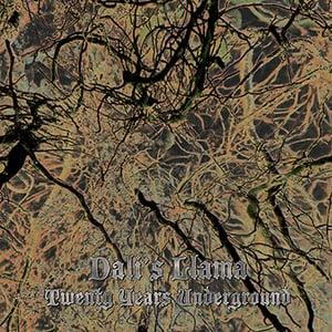 Image of Dali's Llama - Twenty Years Underground LP