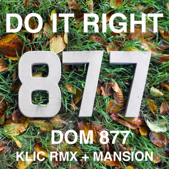 Image of Dom 877 - Do It Right EP Vinyl
