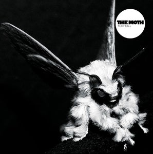 Image of THE MOTH they fall LP