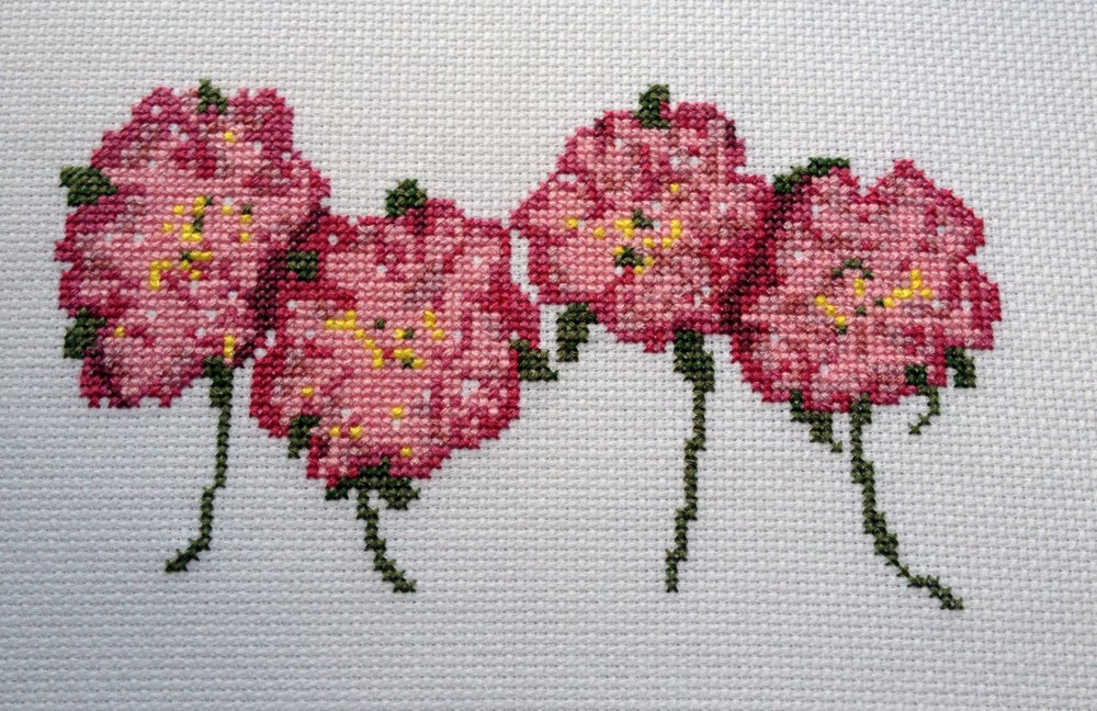 Image of Wildroses Cross Stitch Pattern