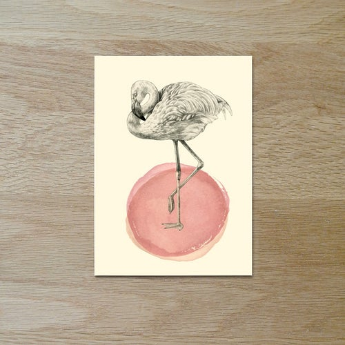 Image of Carte postale simple Flamant rose