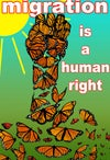 Migration is a Human Right Poster
