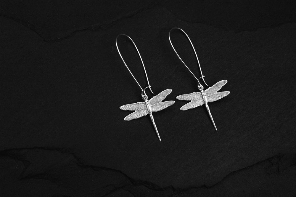 Image of Pair of small dragonfly earrings in silver plated brass