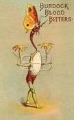 Image of Burdock Blood Bitter - Butterfly Balancing Frog