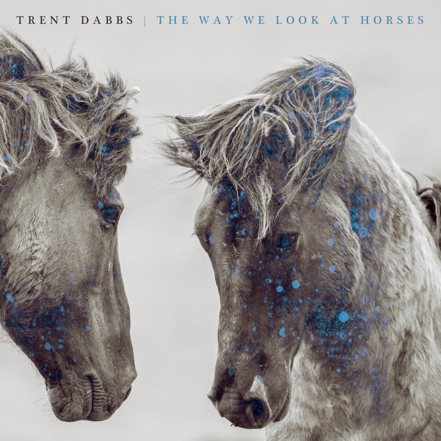 Image of The Way We Look At Horses Vinyl
