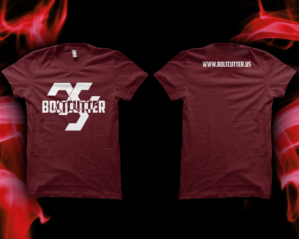 Image of Logo T-Shirt (Maroon)