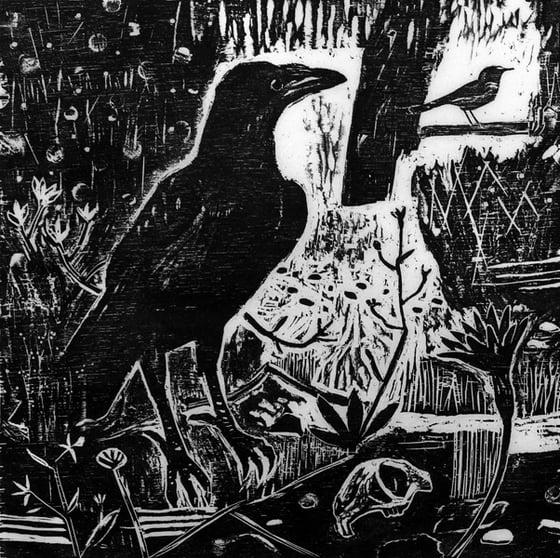 Image of Night's Black Bird
