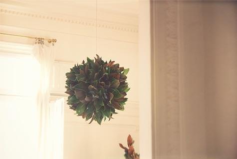 Image of Bolas de magnolia