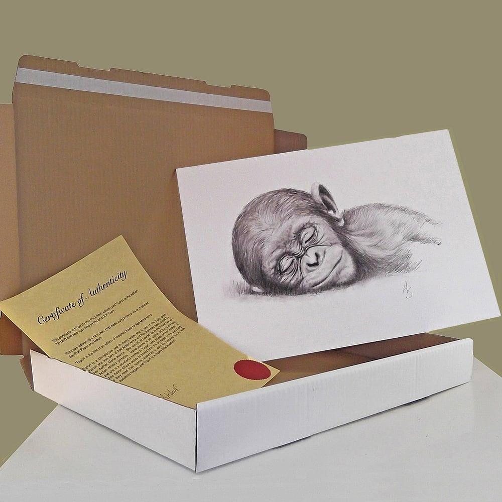 Image of Tupuri - limited edition print