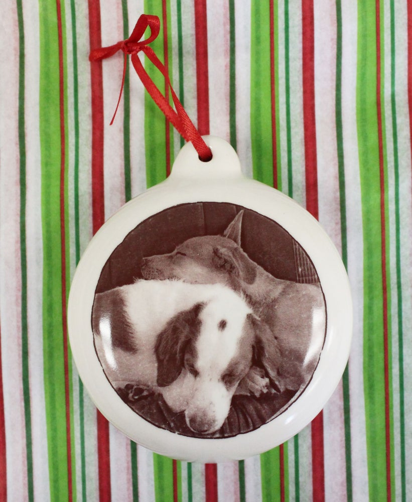 Image of Pet Portrait Ornament