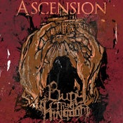 Image of Ascension