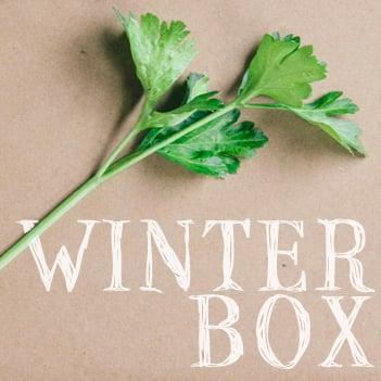 Image of Winter Box