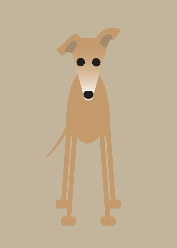 Greyhound Collection