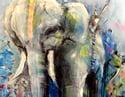 Maximus - Elephant Print