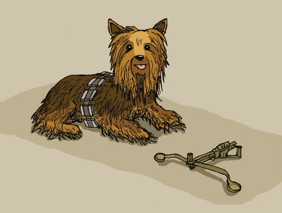 "Image of ""Wookshire Terrier"""