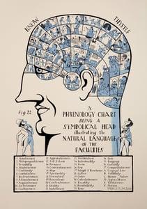 Image of Phrenology Head