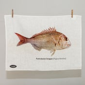 Image of Australasian Snapper Tea Towel