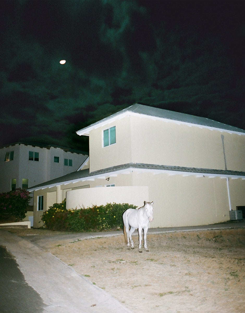 The White Horse, Vieques 2010