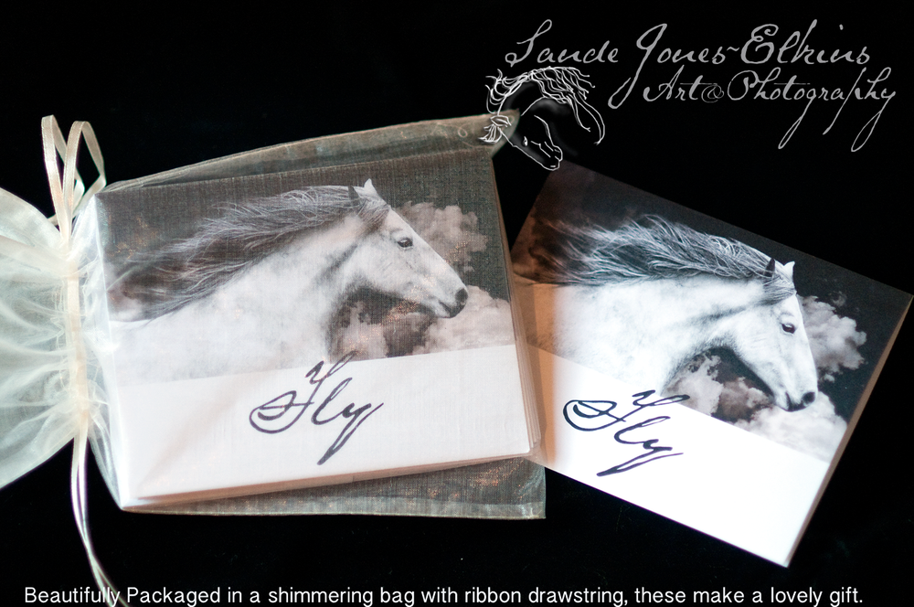 Image of Equine Themed Greeting Card, Just Fly