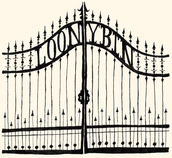 Image of Loony Bin