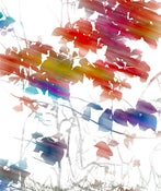 "Image of Silk Scarf, ""Blur"", (22"" x 72"")"