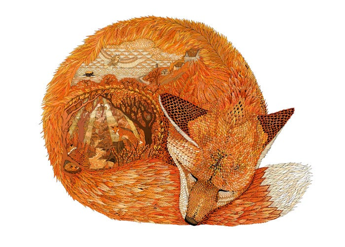 Image of Gwel an Mor Fox