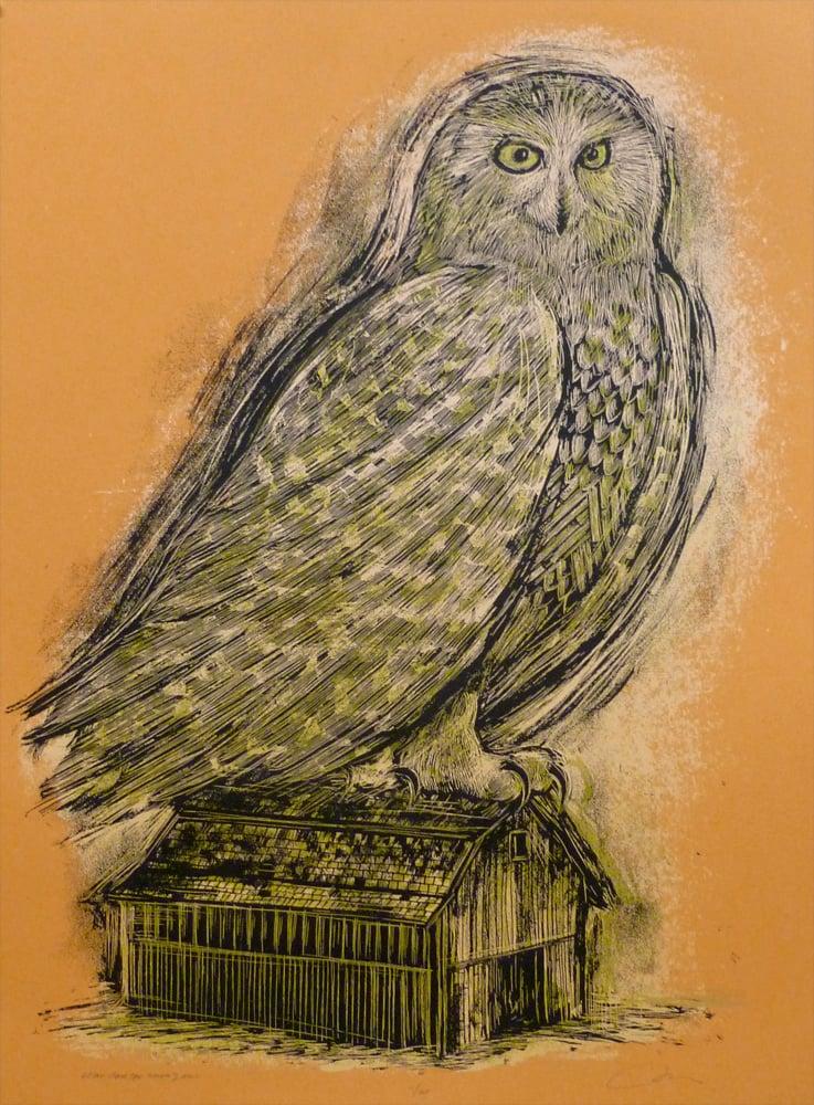 Reconstructed Snowy Owl Orange
