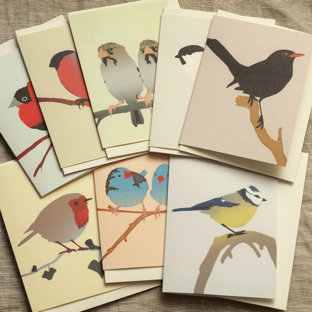 Image of Set of 8 Bird Cards