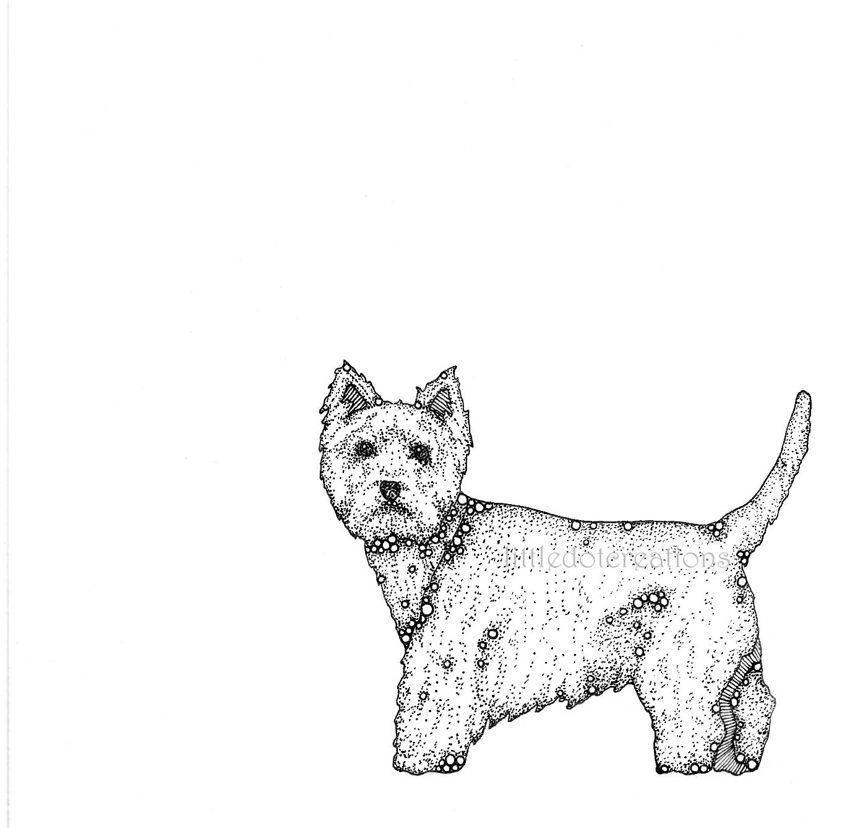 Image of Baxter