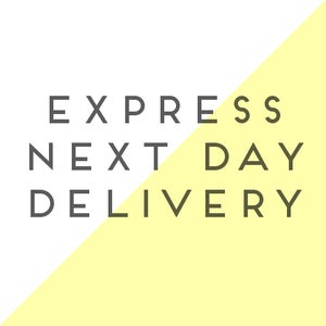 Image of Express Next Day Delivery Postage