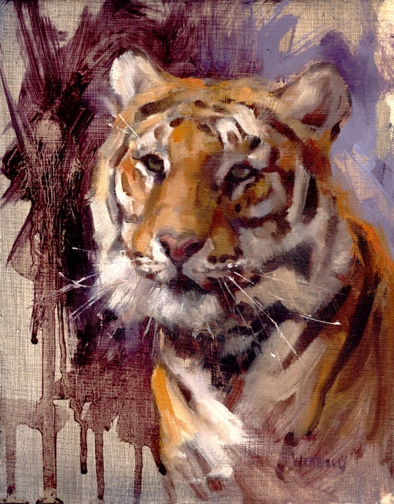 "Image of Tiger Head portrait 8.5""X11"""