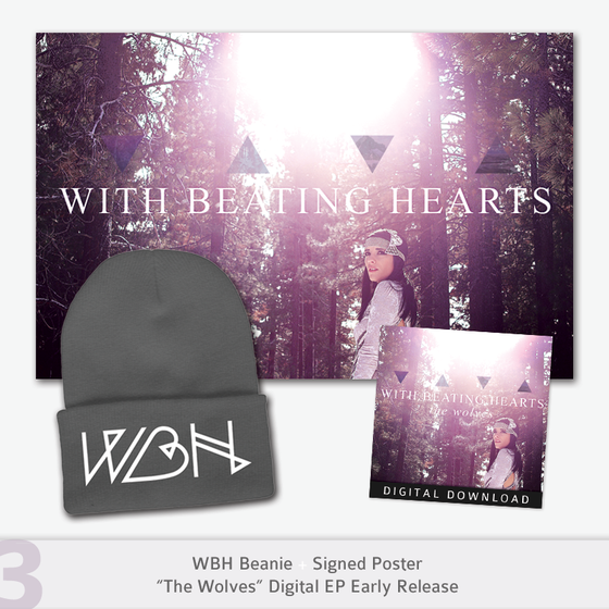 Image of Digital Download + Poster + Beanie ON SALE
