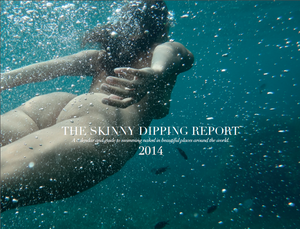 Image of The Skinny Dipping Report 2014