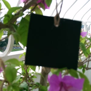 Mini Hanging Chalkboard (6 pieces)