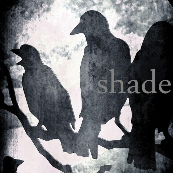 Image of Shade Blend