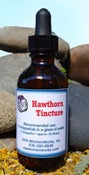 Image of Hawthorn Tincture