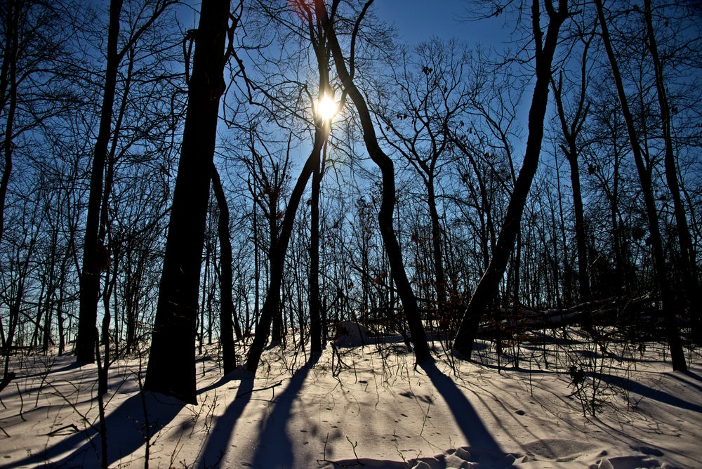 """Image of Sun, snow & silhouettes - Size: 20"""" x 30""""  Material: Mounted Art Print"""
