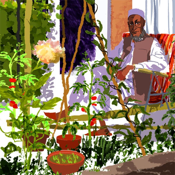 Image of Mr Houdini in his Garden during the World Cup