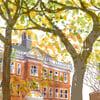 Newington Green, autumn