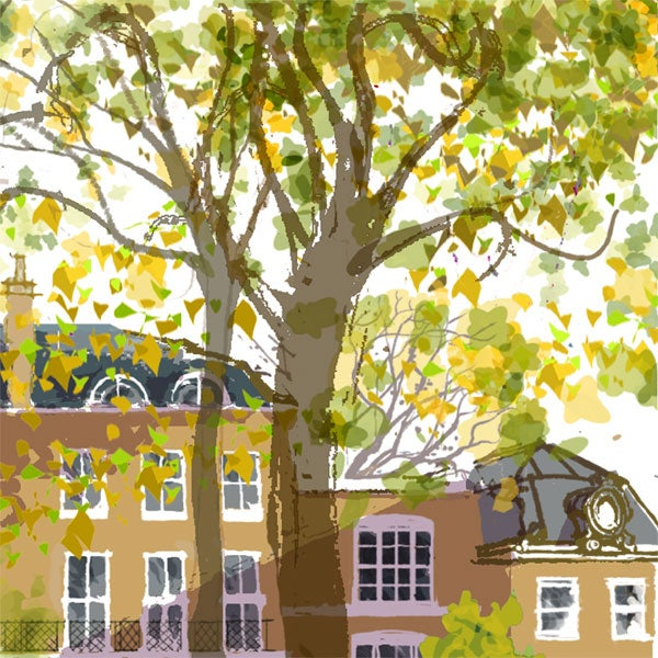 Image of Newington Green, autumn