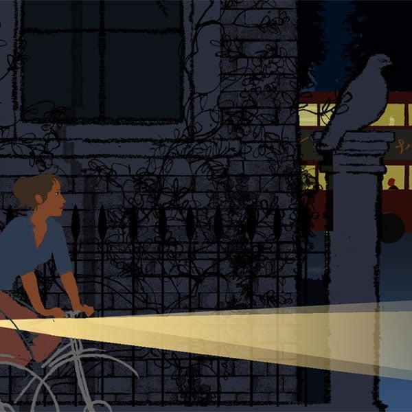 Image of Night Bikes