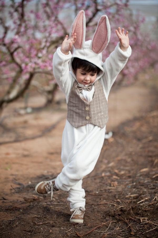 Image of White Rabbit Costume   תחפושת ארנב לבן עם ווסט