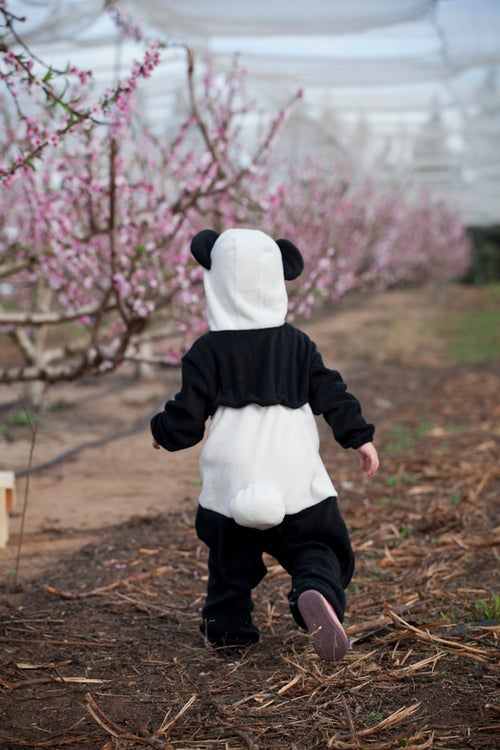 Image of Panda Bear Costume   תחפושת דב פנדה