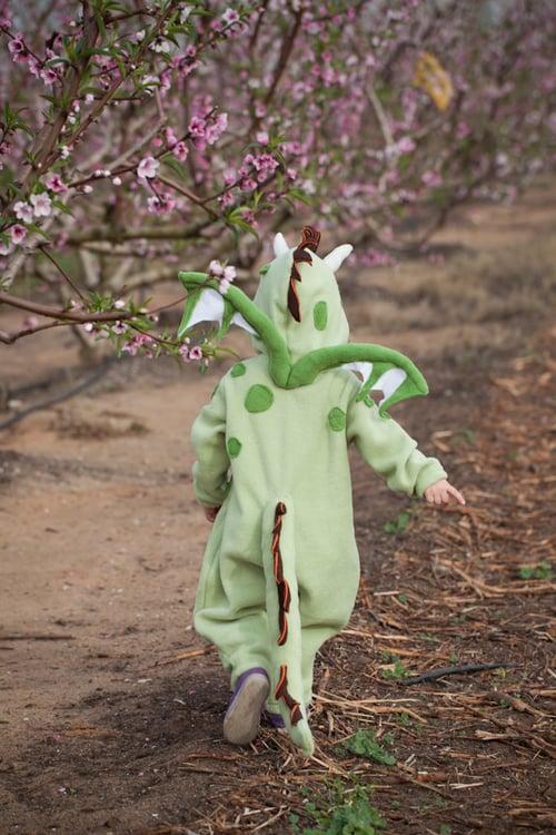 Image of Dragon Costume   תחפושת דרקון
