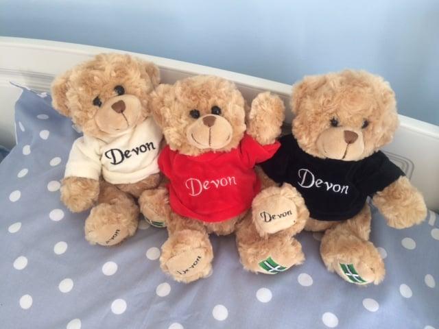 Image of The Devon Teddies are back !!