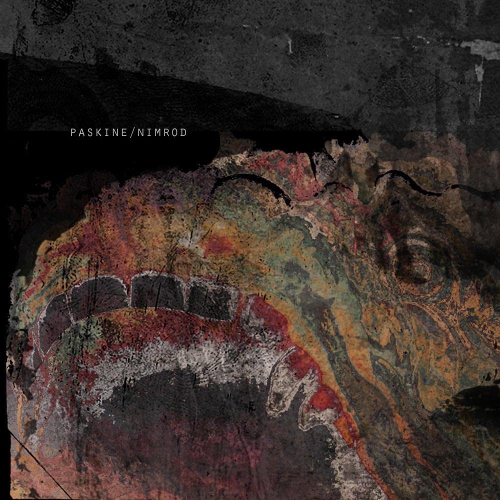 Image of Paskine - Nimrod (CD)