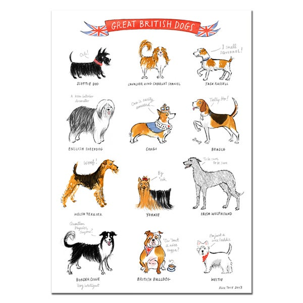Alice Tait 'Great British Dogs' Print - Alice Tait Shop