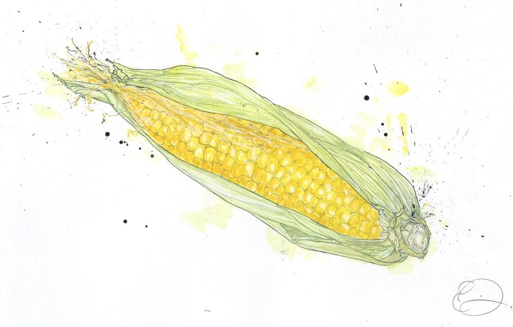 Image of Corn on the Cob